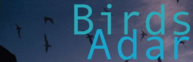 Birds/Adar